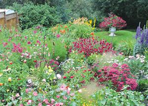The Lakeside Leader summer gardening series