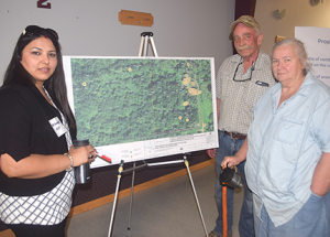 Clean-up plan for osmose site progresses