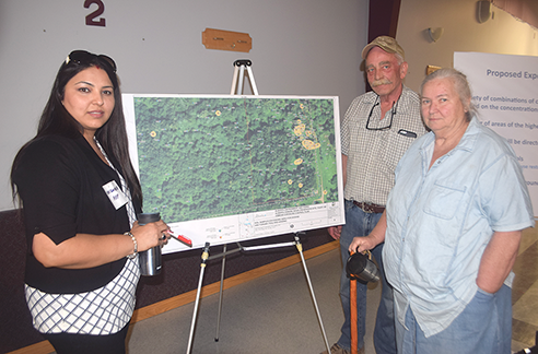 Clean-up plan for osmose site progresses - Lakeside Leader