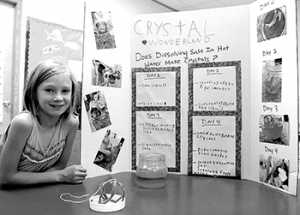 Koinonia students shine during science fair