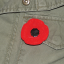 Wearing a poppy in remembrance; what you need to know
