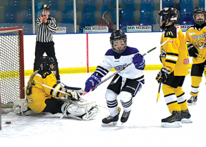 That's a wrap: regular season ends for minor hockey