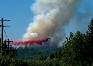 South shore wildfire forces brief evacuation