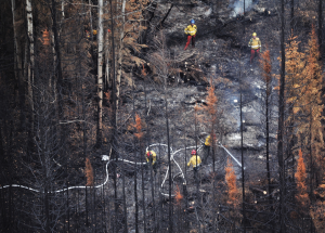 Big McMillan fire '100 per cent contained' as of July 1