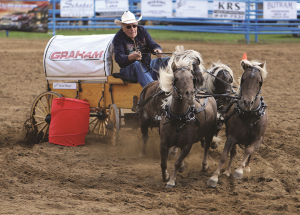 Coming up: the 40th annual Smith/Hondo fall fair and rodeo