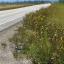 Forgotten highway?
