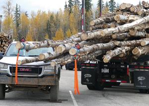 Logs swing wide