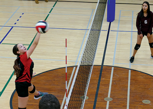 St. Francis ranked first going into volleyball league final